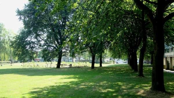 '' Onder de bomen. ''